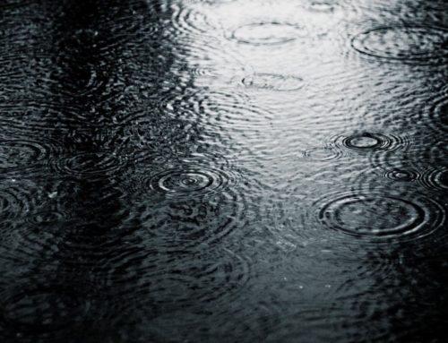 Директорка водовода о поплави у Панчеву