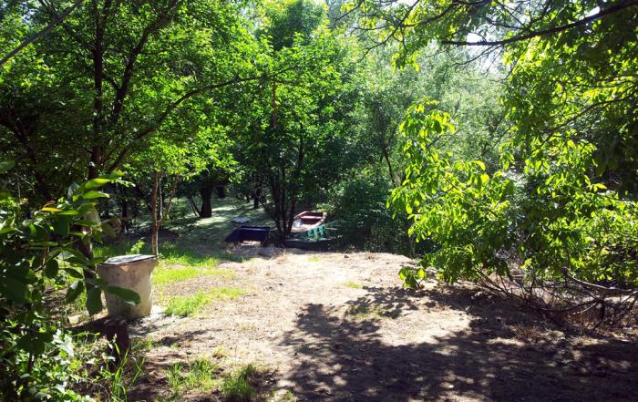 Тамиш, 21.05.2014