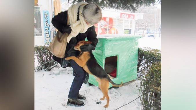 Napušteni ljubimci dobijaju utočište